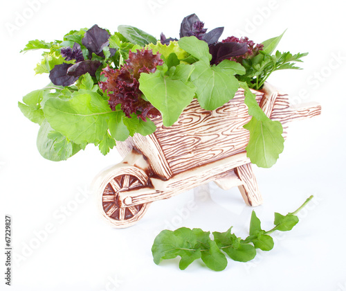 Decorative cart with the healthy greens