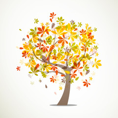 Vector Illustration of an Autumn Tree