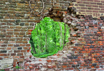 Abandoned brick wall with a hole and a forest behind