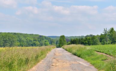 Village road in Walloon in summer, Belgium