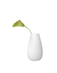 Original Flower in a white vase Isolated on white