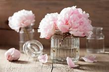 belles fleurs de pivoine rose bouquet dans le vase