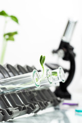 Genetically modified plant tested in test tube .