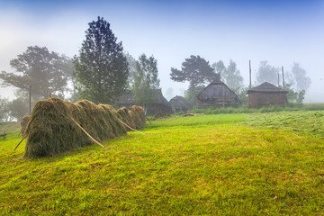 Haymaking in a Carpathian village
