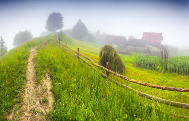 Haymaking in a Carpathian village.