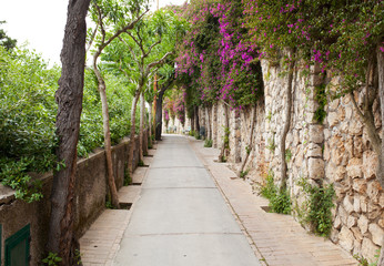 Via Tragara, the famous street of Capri