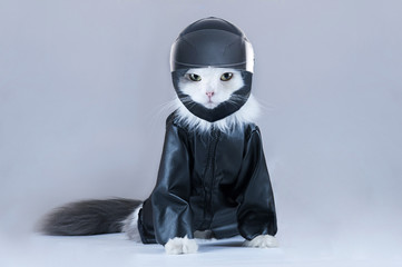 Cat motorcycles