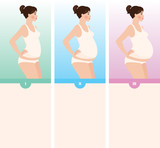Three trimesters of pregnancy poster