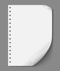Empty Paper Sheet Vector Design