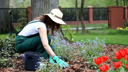 Woman working in garden video