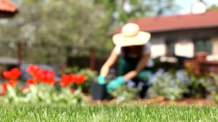 Woman in garden video