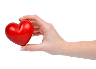 heart in hand isolated on white