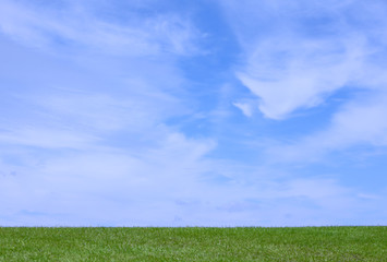 Pretty blue sky with green grass