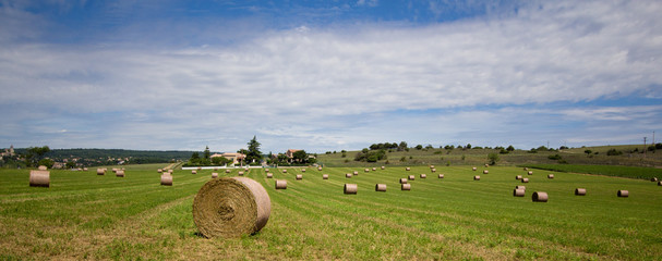 Summer rural landscape with a field and haystacks