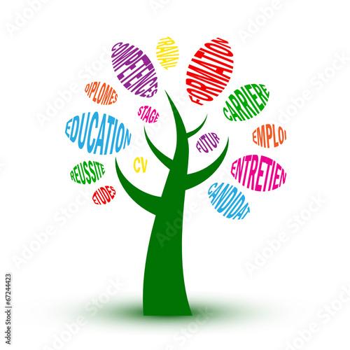 u0026quot arbre  u0026quot formation u0026quot   cv  u00e9tudes emploi r u00e9ussite dipl u00f4mes mots cl u00e9s  u0026quot  fichier vectoriel libre de