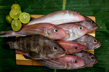 Fresh sea fish with lemon