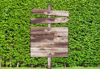 wooden signpost with tree wall