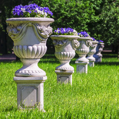 vases with flowers in the park