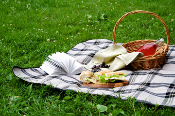 Picnic with a snack and a book on a blanket
