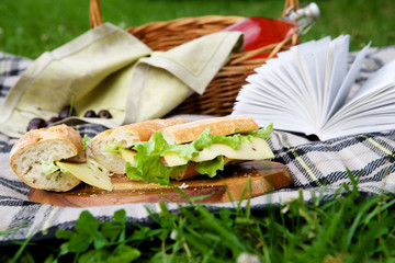 Picnic basket on grass
