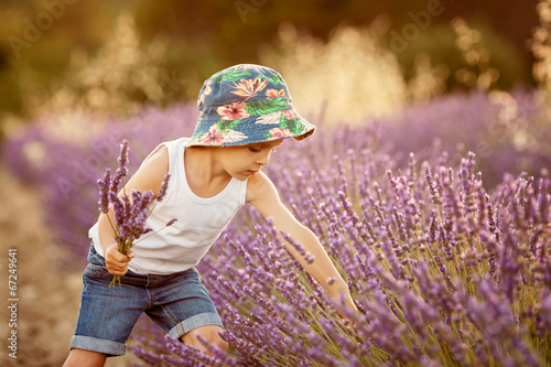 Adorable cute boy with a hat in a lavender field © Tomsickova