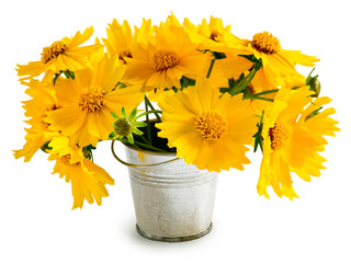 Bouquet of yellow flowers in a small pail