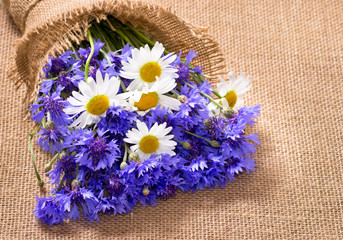 Bouquet of daisies and cornflowers
