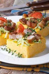 Cut into pieces of polenta with meat and vegetables