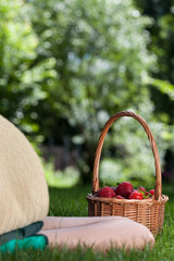 Person resting with basket of strawberries
