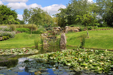 Peaceful Garden with Lily Pond