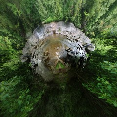 little planet hike