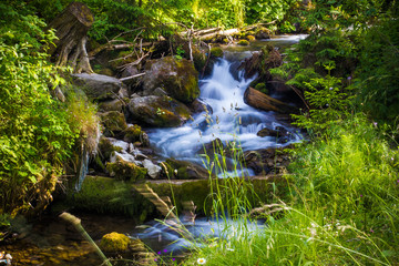 Beautiful waterfall landscape (Ukrainian Carpathian )