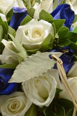 Bach flower remedies Fiori di Bach Fleurs de バッチフラワー
