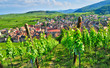 Leinwanddruck Bild - France, picturesque village of Riquewihr in Alsace