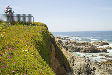 California coastline with lighthouse flags flowers and a picket