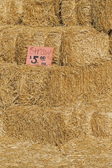 Bales Of Straw For Sale