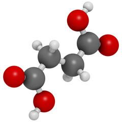 Succinic acid (butanedioic acid, spirit of amber) molecule.