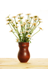Bouquet of daisies in the jug isolated over white