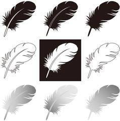 羽毛 モノクロ