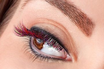 Close-up of colorful false eyelashes