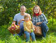 Happy parents and child with   harvested apples