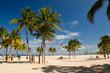 canvas print picture - Beach, Strand, Palmen, Gruppe, Florida, Amerika,