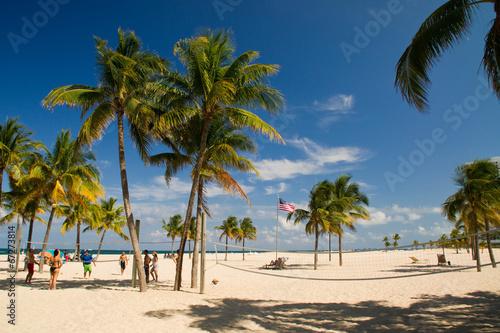 canvas print picture Beach, Strand, Palmen, Gruppe, Florida, Amerika,