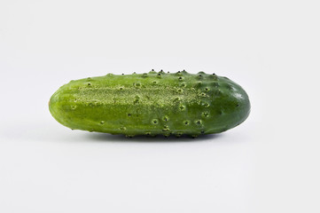 fresh green cucumber isolated against white background