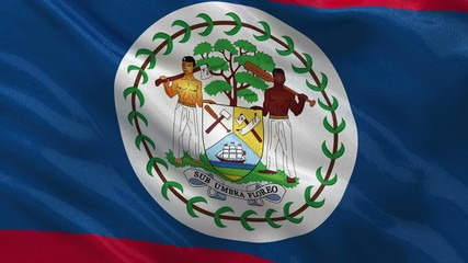 Flag of Belize waving in the wind - seamless loop