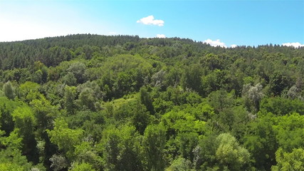 wood on hill .Aerial