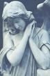 Leinwanddruck Bild - female angel