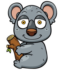 Vector illustration of Koala Bear