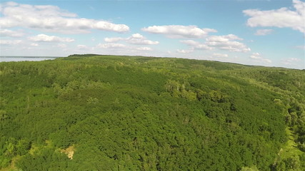 Panorama of  sea, wood  in sunny day. Aerial