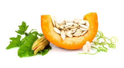Pumpkin with pumpkin seeds